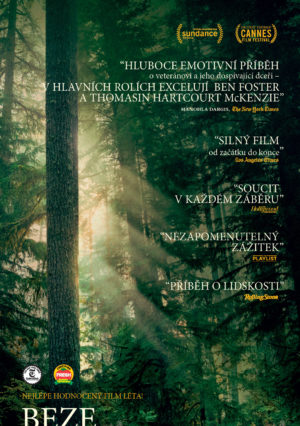 Náhled plakátu k filmu Beze stop